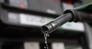 Los dos tipos de gasolinas volverán a subir sus precios esta semana. DL
