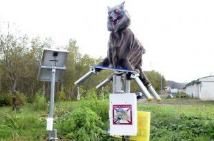 Uno de los lobos robóticos instalados en una localidad de Japón para ahuyentar osos